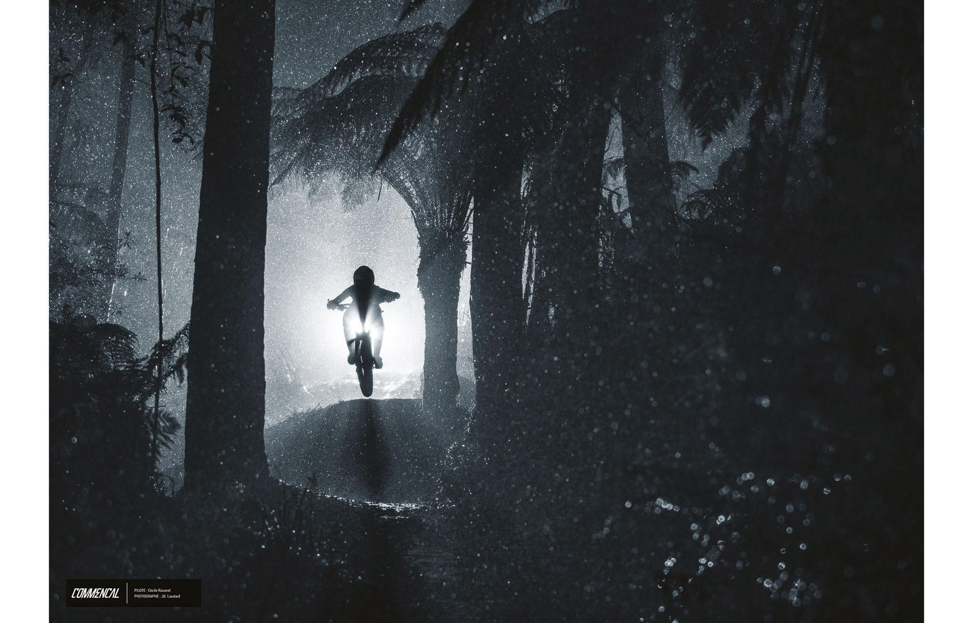4bce56006fd34 FOTO ALTA CALIDAD   CECILE RAVANEL - PALMS ON THE MOON TASMANIA